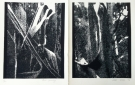 bark-painting-diptych-lino-cut-57x38cm